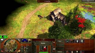 Age of Empires 3 - French Vs Ottomans Late Game