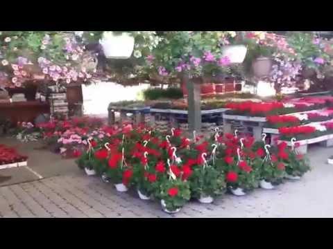 Flower Shop, West Island, Montreal, Canada.