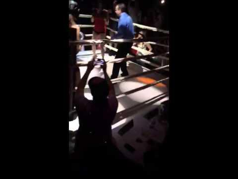 Foxy boxing