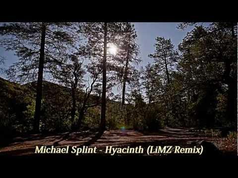 Michael Splint - Hyacinth (LiMZ Remix)
