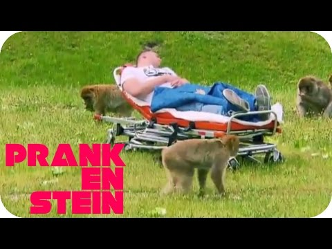 Hypnosis Prank: Waking Up in a monkey cage! | PRANKENSTEIN | ProSieben