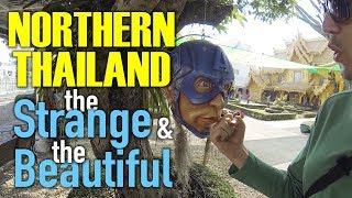 Northern Thailand - the Strange, the Beautiful, and the Tasty
