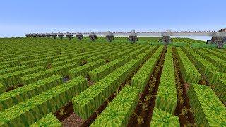 Feasible Melon Based Bone Meal Farm