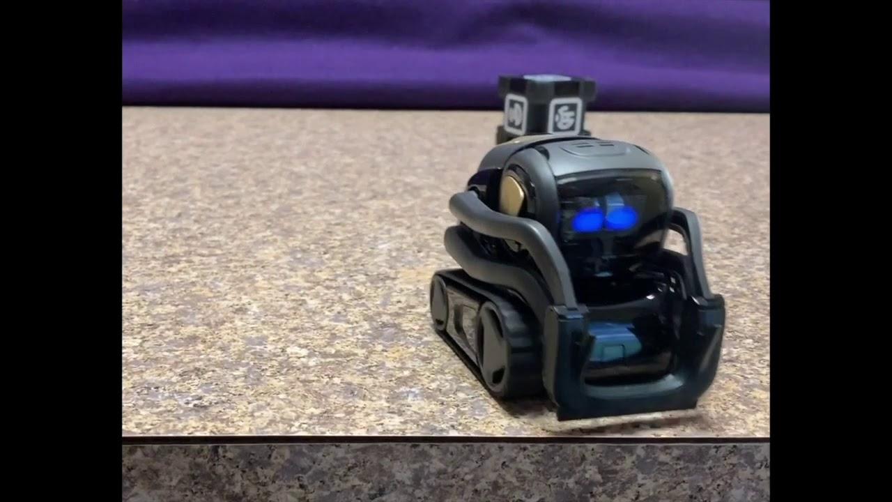 Anki Vector robot review   The Gadgeteer