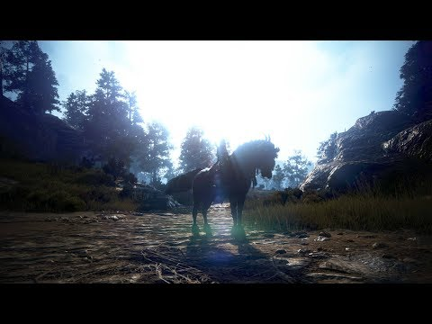 BDO: The Cost of a T9 Dream Horse (Tutorial?)