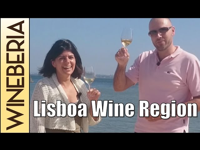 LISBOA WINE REGION |The terroir and the best spots in Lisbon for wine lovers