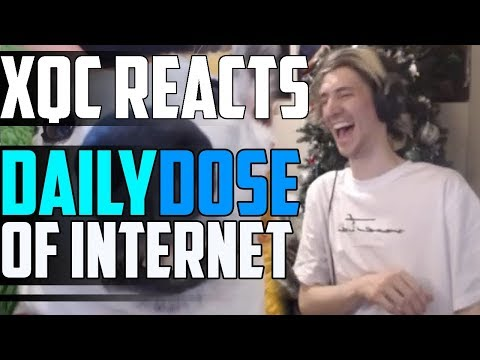 xQc REACTS TO DAILY DOSE OF INTERNET