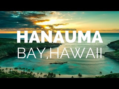 hanauma-bay-beach-hawaii-vlog-hd-|-nepali-brewboy-channel
