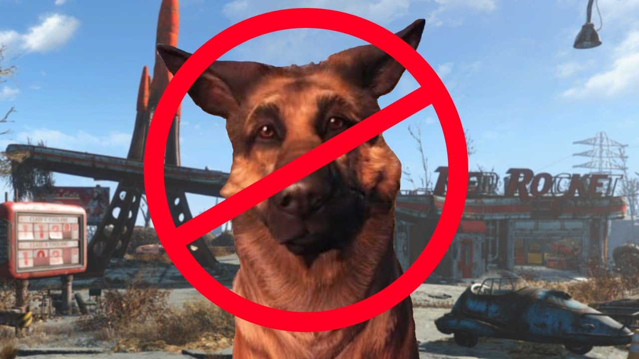 How To Make A Dog Get A Red Rocket