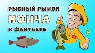 Конча. Рыбный рынок в Фантьете | Про Вьетнам(В этом видео канала «Про Вьетнам» мы расскажем Вам про самый крупный в Фантьете оптовый рыбный рынок, котор..., 2015-08-16T14:49:27.000Z)