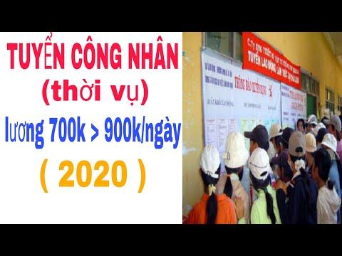Tuyển Công Nhân Làm Thời Vụ 700k Đến 900k/Ngày   Tuyển Dụng Năm 2020  Tìm Kiếm Việc Làm Ngay