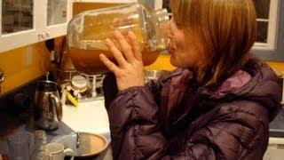 Что такое Чайный Гриб: чем полезна Комбуча ~ Чайный Гриб