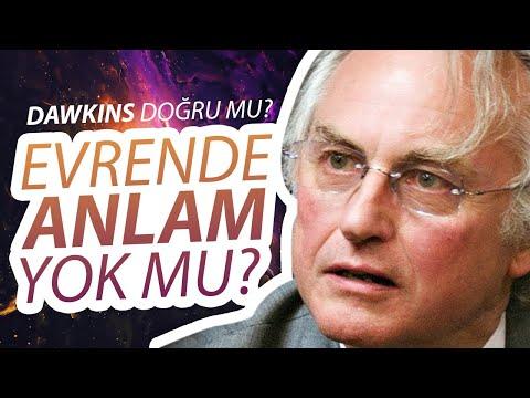 Richard Dawkins'in İddiaları Doğru Mu, Evrenin Bir Amacı Yok Mu? / Enis Doko