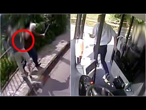 Autista ferma il bus e corre ad aiutare un'anziana aggredita: l'eroico salvataggio