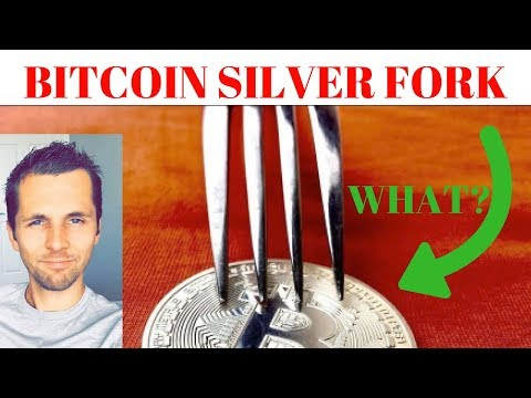What Is Bitcoin Silver Hard Fork? New Bitcoin Fork In December [How To Leverage This]
