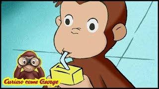Curioso come George 🐵Dove va a finire la spazzatura? 🐵Cartoni Animati 🐵George la scimmia