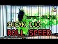 Cucak Ijo Kalimantan Gacor Full Tembakan Roll Speed Kasar Untuk Pancingan   Mp3 - Mp4 Download