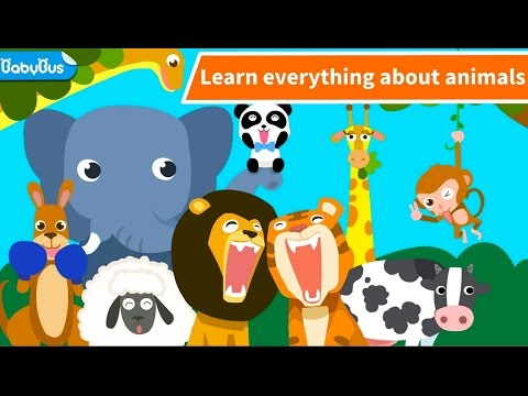 Animal Paradise |Fed to animals| Kids learn Animals  growth l BabyBus Kids Games