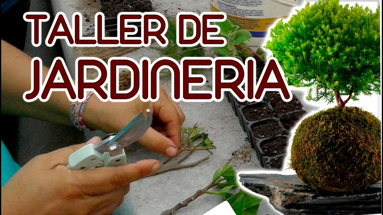 Taller de jardineria youtube for Taller jardineria barcelona