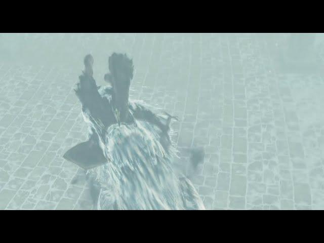 Dark Souls 2 Folge #125 Aava und sein Bissangriff