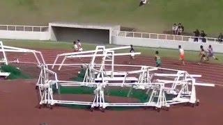 2014 千葉県高校総体 陸上 男子 4X400mR 決勝