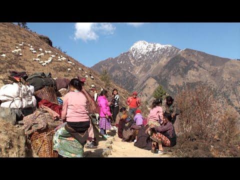 taking rest || Nepal || himalayan life || village life ||