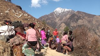 taking rest || Nepal || himalayan life || village life ||
