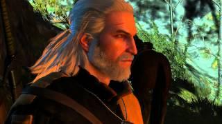 Witcher 3 Хозяйки леса Не убивать дух