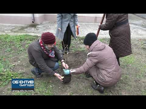 ТРК НІС-ТВ: Об'єктив 1 12 20 В краєзнавчому музеї висадили унікальне дерево