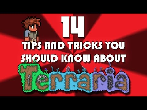 14 Tips and Tricks You Should Know About Terraria