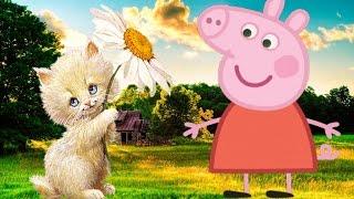 как назвать котенка мальчика Peppa Pig Свинка Пеппа развивающее видео