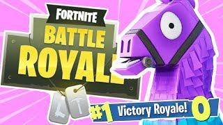 NOOBS PLAY FORTNITE! (Fortnite Battle Royale)