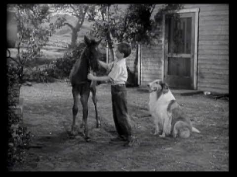 Lassie  Episode 3