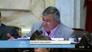 Diputado Selva Carlos Américo - Sesión 13-09-2017 - CP