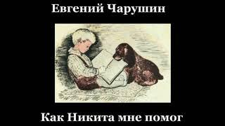 Как Никита мне помогал Никита Чарушин  читает Павел Беседин
