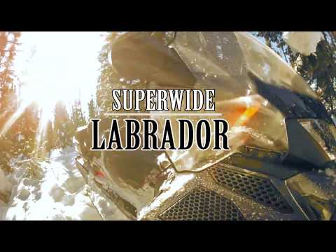 Superwide in Labrador