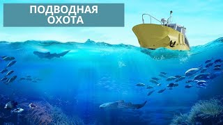 Подводная охота на Кап Ферра