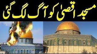 why Pakistani Actress Reema Khan Visits Israel Along Husband