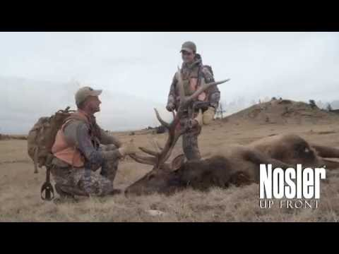 Elk Hunting Cartridges And Calibers - Randy Newberg's Thoughts