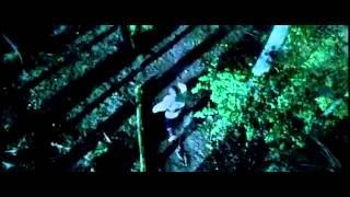 фильм Тени незабытых предков 2013 трейлер + торрент
