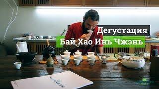 Дегустация Белого чая Бай Хао Инь Чжэнь в Чжэнхэ, провинция Фуцзянь