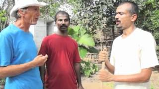 Village Kitchen Garden Project - Heal The Soil CSA - Permaculture India