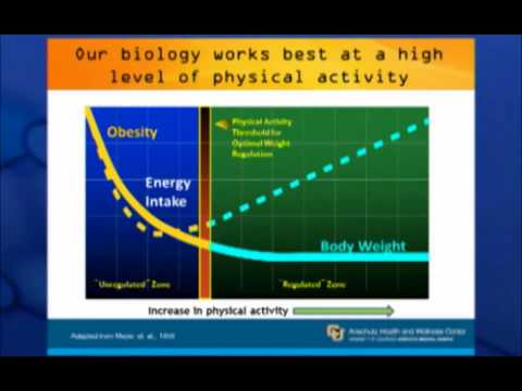 James O. Hill Ph.D. The Importance of Energy Balance