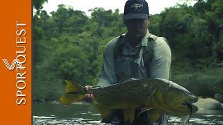 Tsimane Hosted Golden Dorado Fishing with Sportquest Holidays