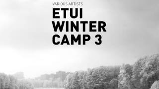 Matthias Springer - Answering No Questions [Etui Winter Camp 3]