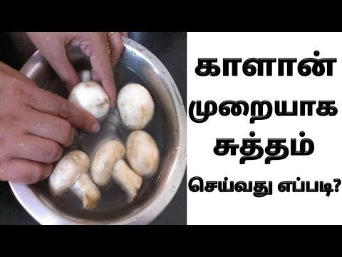 How to wash mushrooms before cooking in tamil | காளான் சுத்தம் செய்வது எப்படி | kaalan wash seivathu