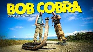 BOB COBRA, EXPERT EN REPTILES