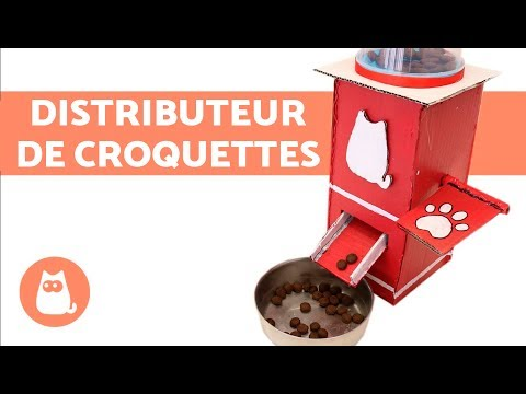 DIY : Comment Fabriquer Un Distributeur De Croquettes Pour Chien