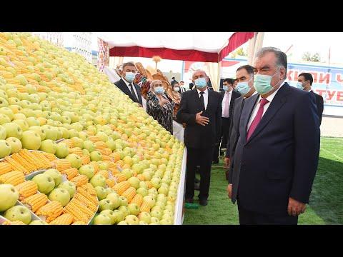 Эмомали Рахмон в Согдийской области. Успехи аграриев Зафарабадского района