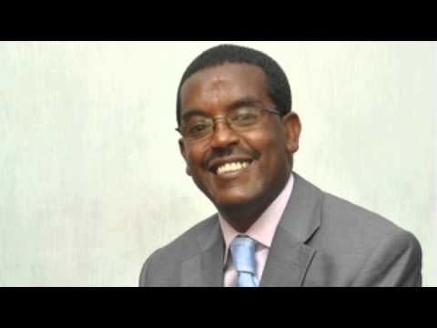 2013 in review: Politics - SBS Amharic